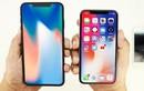iPhone LCD 6,1 inch sẽ thay thế iPhone 8 và 8 Plus?