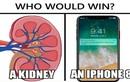 """iPhone 8 ra mắt, dân mạng rủ nhau... """"bán thận"""" kiếm tiền"""