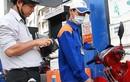 Giá xăng giảm nhẹ, giá dầu tăng bắt đầu từ chiều nay