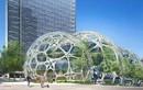 Amazon chuẩn bị chi 5 tỷ USD cho trụ sở mới