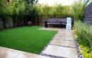 Sân vườn vẫn xanh tươi, tràn đầy sức sống trong những ngày lạnh