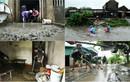 Mưa lũ ở Quảng Ninh: Những hình ảnh đau lòng khi nước rút