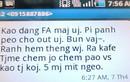 Trào lưu viết tiếng Việt độc lạ từng phổ biến trong giới trẻ