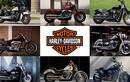 Xe môtô Harley-Davidson Softail 2018 lộ giá tại Việt Nam
