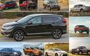 Top 10 xe ôtô bán chạy nhất thị trường Mỹ