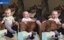 Ngộ nghĩnh bé cười nắc nẻ khi bị chó cù bụng
