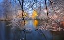 Bộ sưu tập hình nền mùa đông cực đẹp cho smartphone