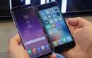 Có nên mua Galaxy S8 hay iPhone 7 đang giảm giá?