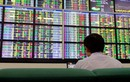 Nhiều cổ phiếu ngân hàng giảm sau vụ ông Trầm Bê bị bắt