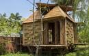 Mê mẩn những ngôi nhà tre đẹp nhất Việt Nam