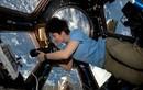 Nữ phi hành gia xử lý kỳ đèn đỏ ra sao trong vũ trụ