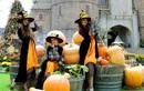 Hơn 10 tấn bí, ngô, táo trang trí Halloween Sun World Ba Na Hills