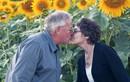 Ngắm cánh đồng hướng dương của người chồng yêu vợ ung thư