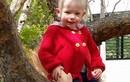 Khủng khiếp bé 2 tuổi như bà chửa vì khối u ung thư 8kg