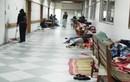 Đi chăm bệnh nhân, người nhà: Nguy cơ mắc sốt xuất huyết rất cao