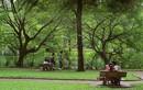 Những bí mật trong lòng công viên đầu tiên của Hà Nội