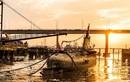 Trung Quốc cho nghỉ hưu tàu ngầm Type 033 làm bảo tàng