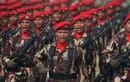 Ngỡ ngàng sức mạnh quân sự quốc gia đứng đầu Đông Nam Á