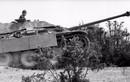 Điểm mặt dàn pháo chống tăng tự hành khuynh đảo CTTG 2