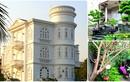 """Những """"phố biệt thự"""" đẹp lung linh ở Hải Phòng, Quảng Ninh"""