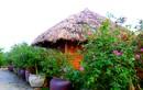 Nhà mái lá lạc giữa vườn hồng đẹp như cổ tích ở Hà Nội
