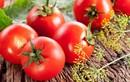 12 thực phẩm ăn càng nhiều càng ít nguy cơ ung thư