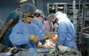 Việt Nam thực hiện thành công ca ghép phổi đầu tiên