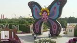 Điều khó tin trong công viên bướm lớn nhất thế giới
