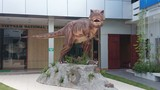 Bật mí nửa thế kỷ theo dấu khủng long ở Việt Nam