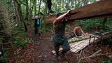 Colombia: FARC rục rịch chuẩn bị ký thỏa thuận hòa bình