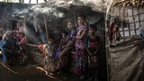 Cuộc sống khốn khổ của người tị nạn Rohingya