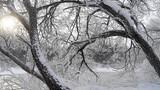 Mùa đông trắng xóa ở đông bắc Trung Quốc
