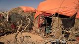 Hình ảnh nạn đói Somalia đang đe dọa 6,2 triệu người