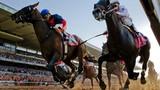 Mổ xẻ thú chơi đua ngựa của giới đại gia