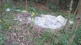 Tin mới về mộ bất thường trong rừng tràm: Phát hiện nhiều xương cốt