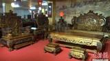 Cận cảnh bộ bàn ghế gỗ cẩm lai vàng giá gần 700 tỉ đồng