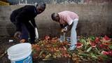 Xót xa dân Venezuela tìm thức ăn ở bãi rác