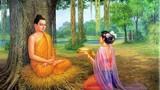 Phật giải thích vì sao phụ nữ ăn mặc hở hang sẽ bị quả báo