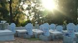 Thăm nghĩa địa cá voi linh thiêng nhất Việt Nam