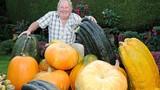Cụ ông 67 tuổi trồng rau quả to hơn cả người cháu gây choáng