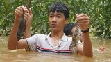Chùm ảnh: Ngụp lặn trong nước lũ săn món chuột đặc sản