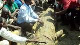 Đau lòng nữ sinh trẻ đẹp bị cá sấu tấn công khi tắm