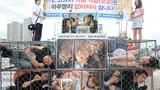 Hàn Quốc đóng cửa chợ thịt chó để đăng cai Olympics