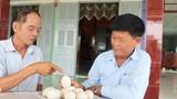 Tiền Giang: Trưởng phòng bị kỷ luật khiển trách vì trộm trứng vịt