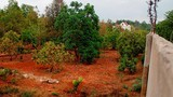 Ông Nguyễn Sỹ Kỷ thừa nhận xây biệt thự trên đất nông nghiệp