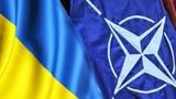 Cựu Tư lệnh NATO: NATO không cần Ukraine