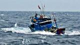 7 ngư dân Bình Định bị nạn, mất liên lạc trên biển
