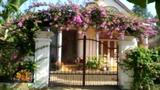 Cách làm đẹp cổng và hàng rào đón Tết