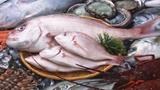 Xuất hiện hóa chất lạ ngâm cá tăng gấp rưỡi trọng lượng