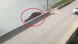 Clip: Tài xế ngủ gật lái xe lao xuống hồ